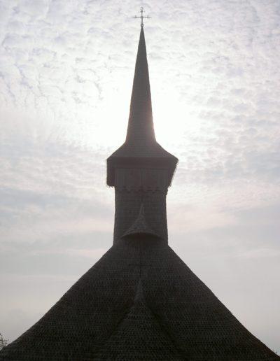 culcea-mjia-2004-005
