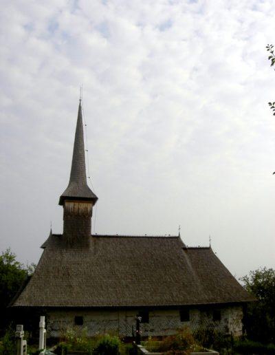 culcea-mjia-2004-011