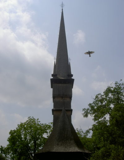 surdesti-arhiva-mjiamm-2004-11