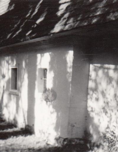 copalnic-arhiva-djc-01
