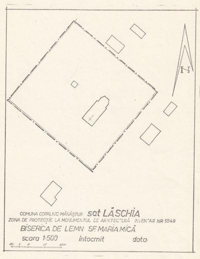 laschia-006