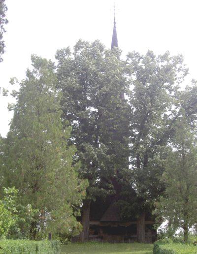remetea-chioarului-mjia-2004-02