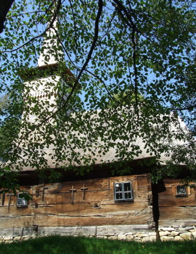 sapaia-arhiva-mjia-2008-03