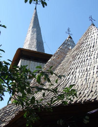 sapaia-arhiva-mjia-2008-11
